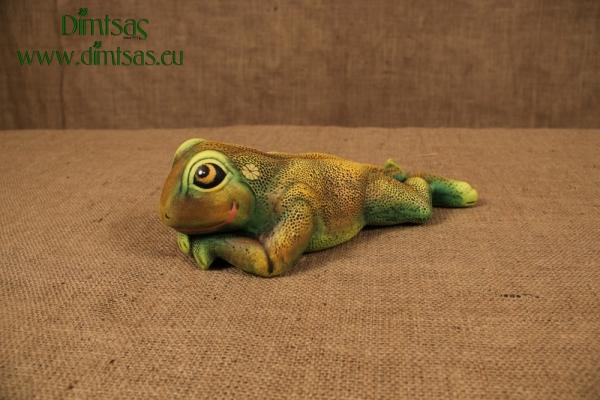 Βατραχίνα Ξαπλωμένη Μπρούμυτα