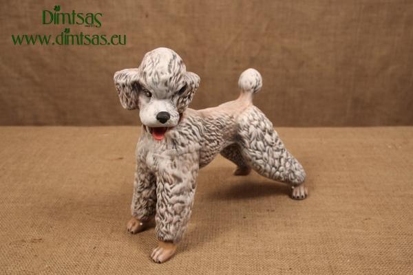 Σκύλος Κανίς