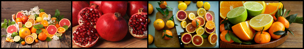 Pomegranate & Citrus Fruits for Juice with the Press Juicer Pomegranate